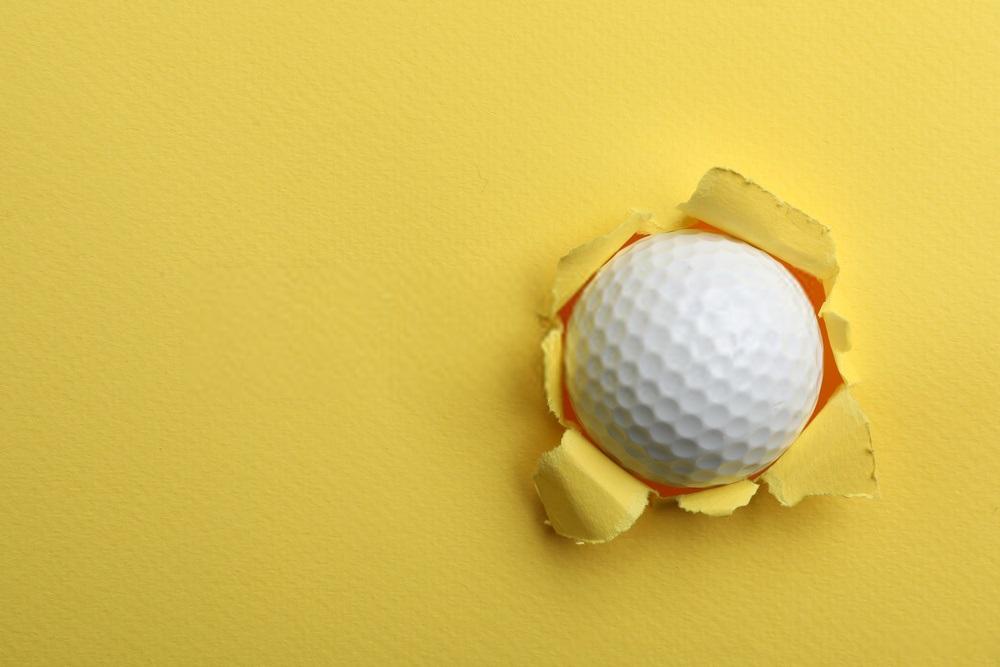 10 Best Nike Golf Ball Reviews